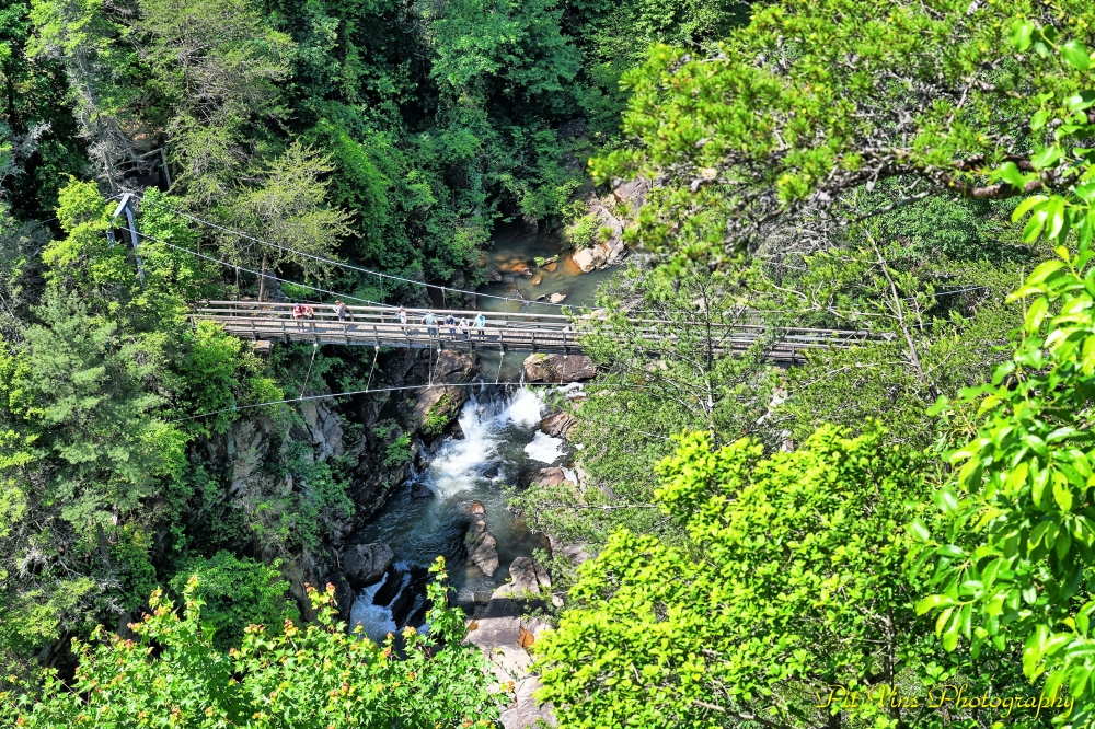 Tallulah Gorge and Bridge