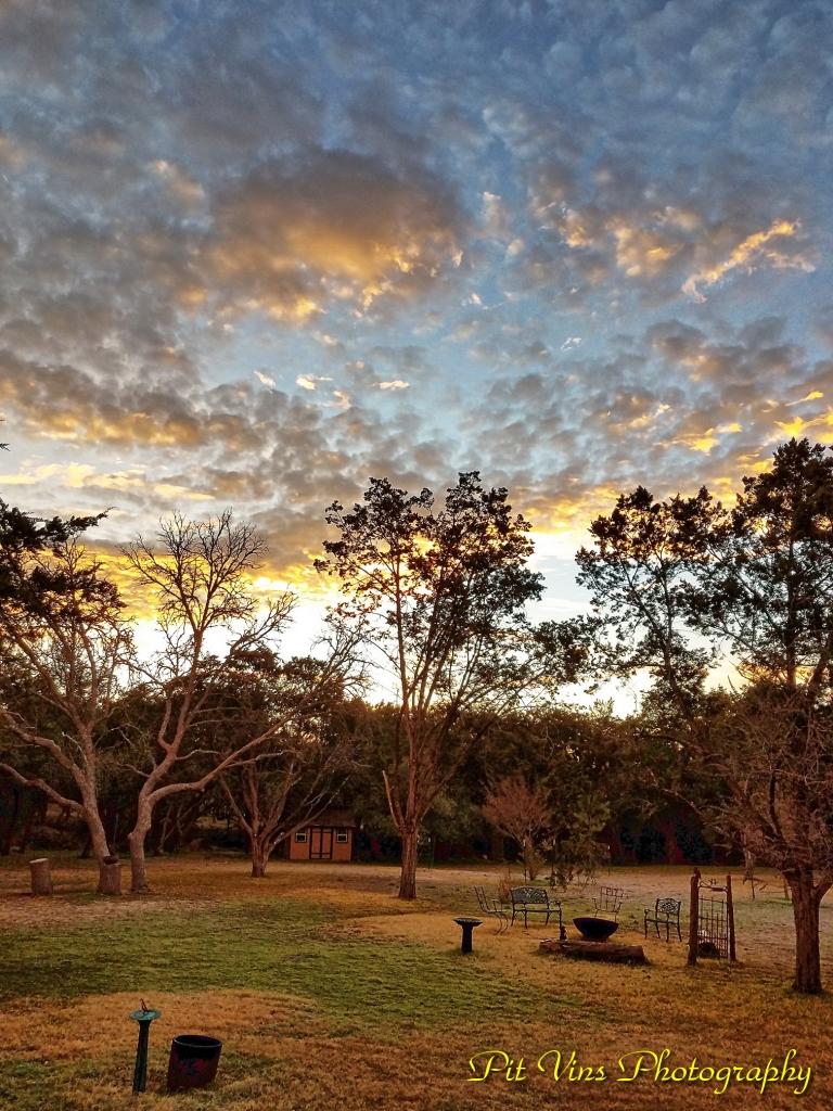 Back Yard Shortly after Sunrise
