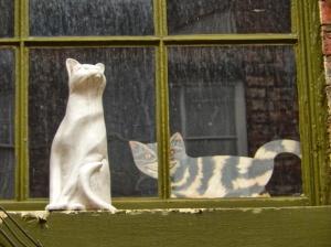 York's Cat Statues